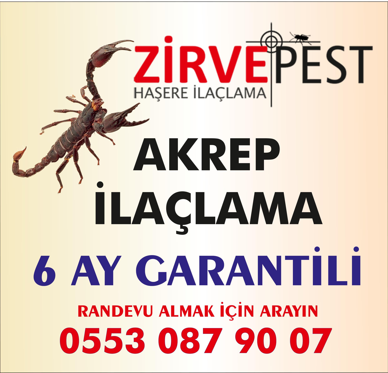 Antalya Akrep İlaçlama Firması