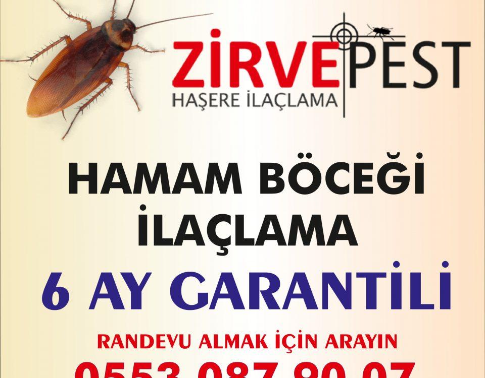Antalya hamam böceği ilaçlama