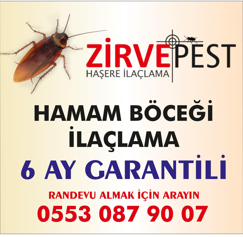 Antalya Hamam Böceği İlaçlama Firması