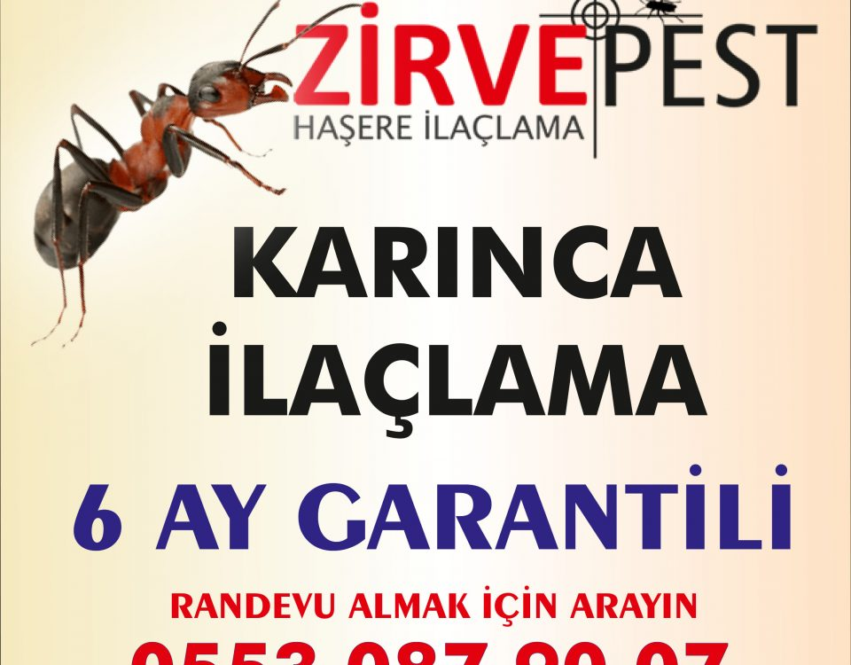 karınca ilaçlama antalya