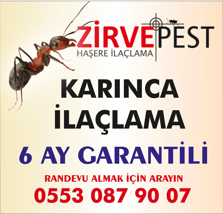Antalya Karınca İlaçlama Firması