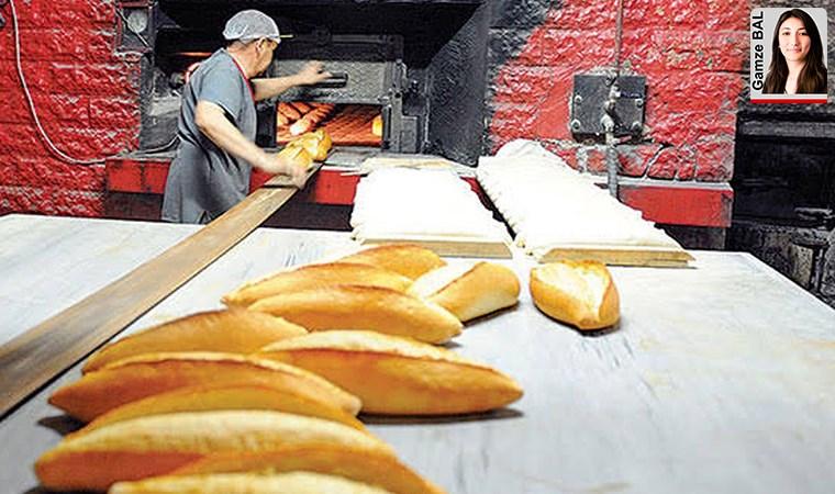 Antalya İşletme İlaçlama – Gıda İşletmesi İlaçlama Hizmeti